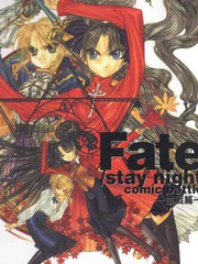 Fate/stay night 血战篇